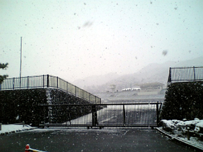 Snow0010_2