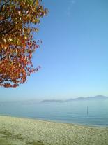 10_beach081113d