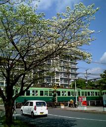 Hanamizuki3
