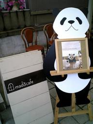 Panda090829b