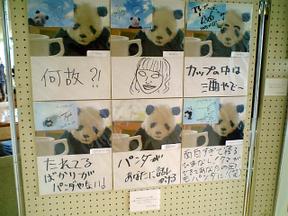 Panda090829c