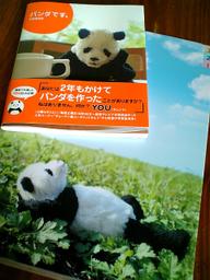 Panda090829e
