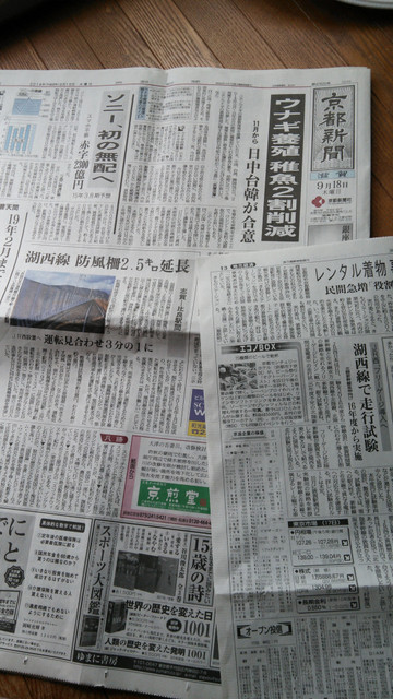 Koseisen_kiji