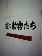yoru_animal