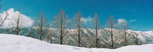 冬景色@マキノ