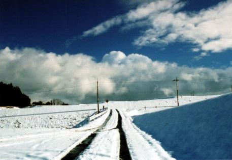 新春雪景色。