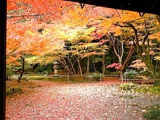 【滋賀】大津・石山寺にて