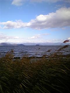 【滋賀】湖北初冬