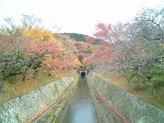 【滋賀】大津・琵琶湖疏水あたり