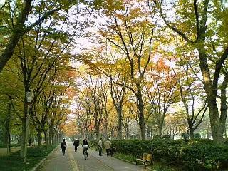 【大阪】靭(<br />  うつぼ)公園