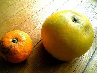 橙と晩平柚